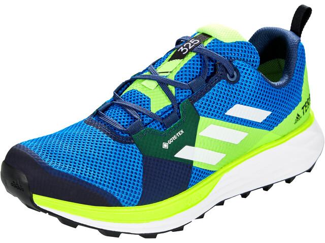 adidas TERREX Two Gore-Tex Zapatillas Trail Running Hombre, glory blue/footwear white/signal green